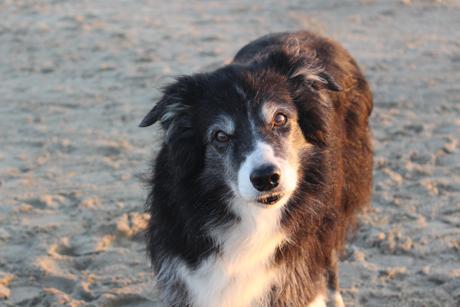 Mae ist zum ersten Mal in ihrem Leben am Strand.